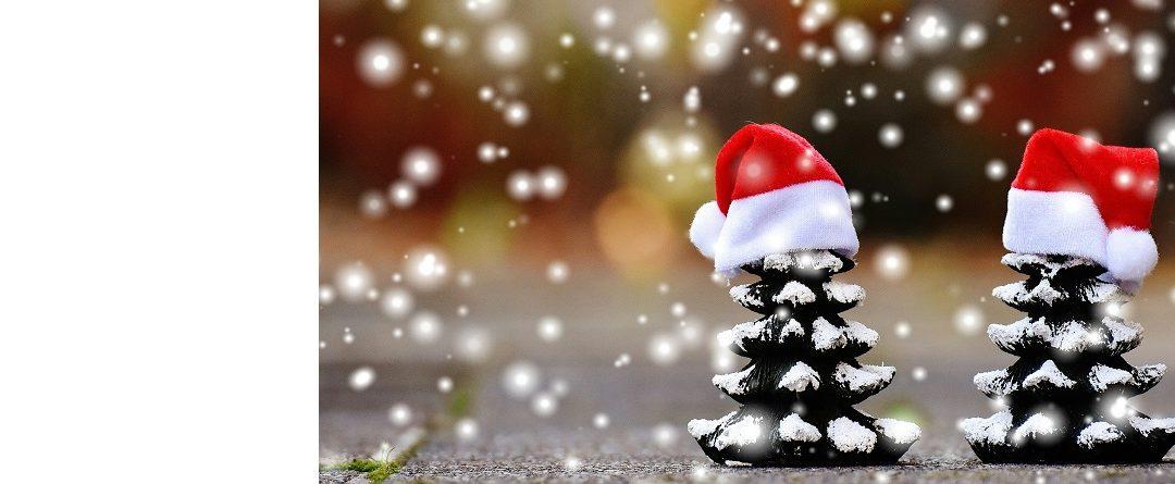 Życzenia Świąteczne i Noworoczne 🎁